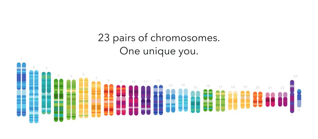 23andMe chromosomes picture