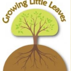 Growing%20Little%20Leaves%20blog