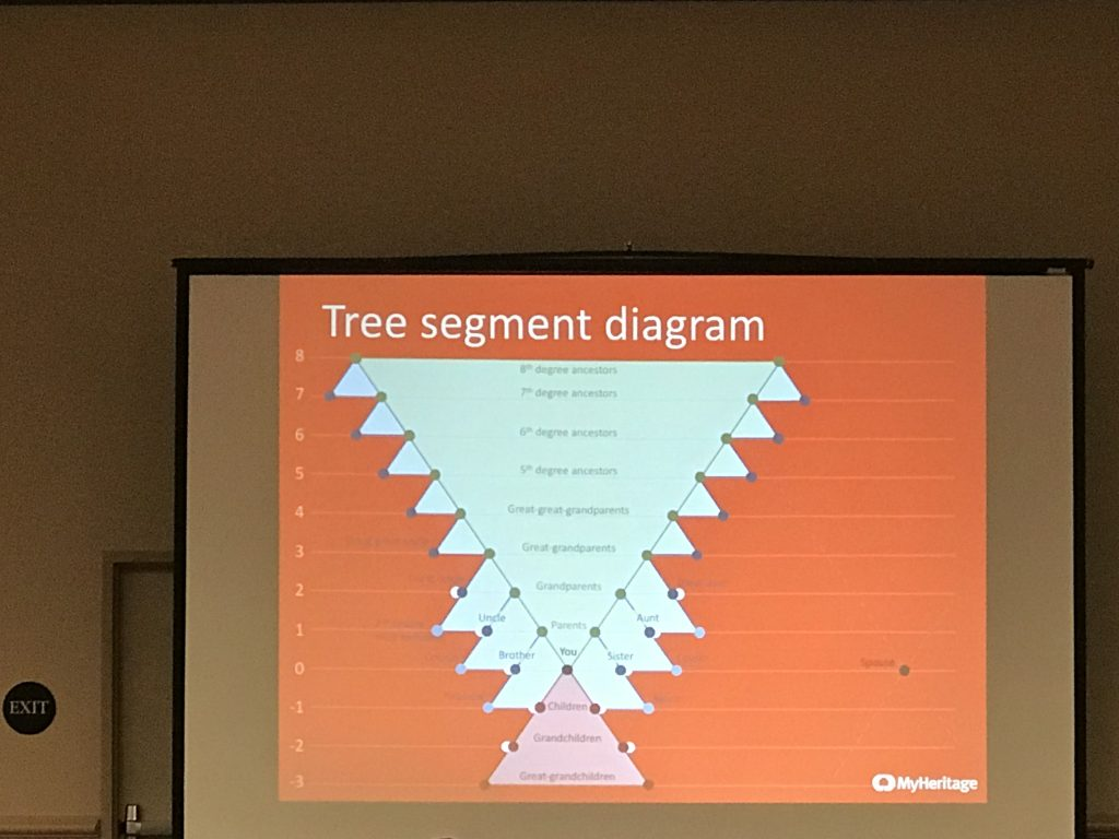 Image of MyHeritage PowerPoint showing the portion of a FamilySearch tree that you can import to MyHeritage