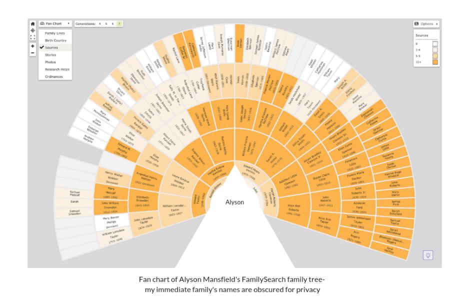 family tree for 5 person - Lokas australianuniversities co